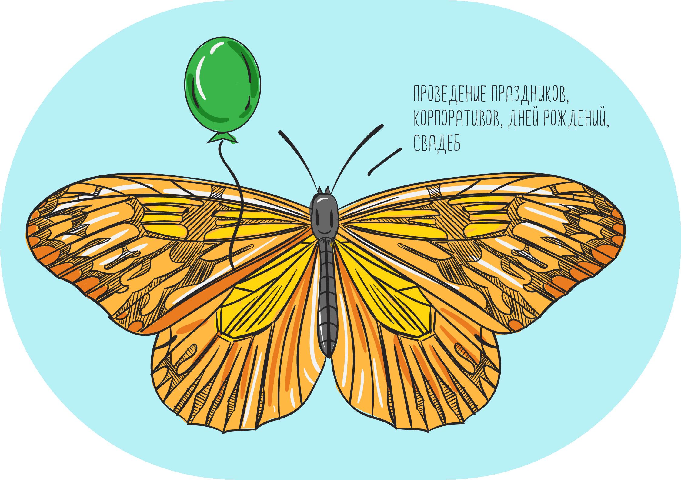 Бабочка в домашних условиях