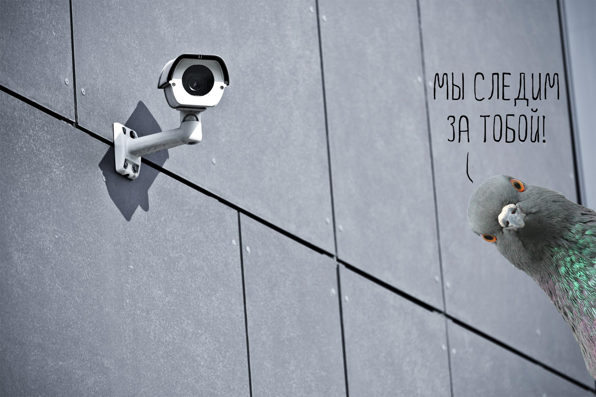 Мы следим за тобой