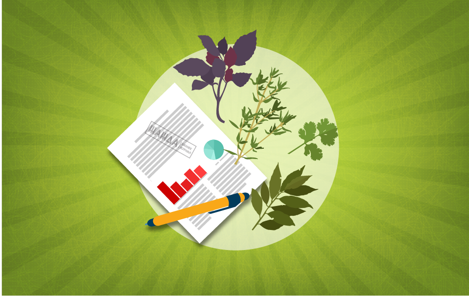 Бизнес план по выращиванию зелени в теплице
