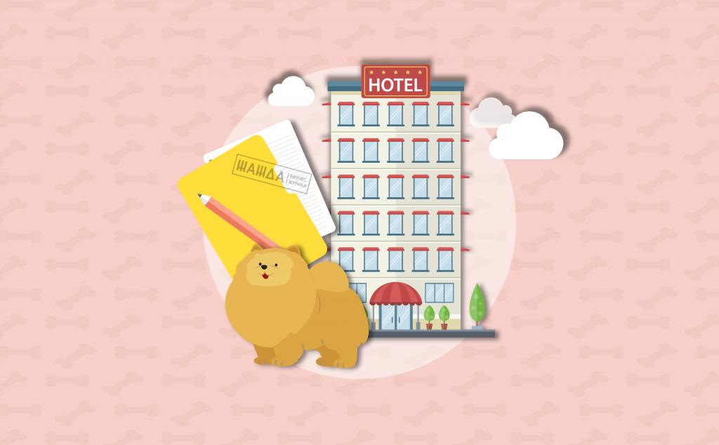 Бизнес-план гостиницы для животных – как открыть гостиницу для животных, анализ рынка, сроки окупаемости