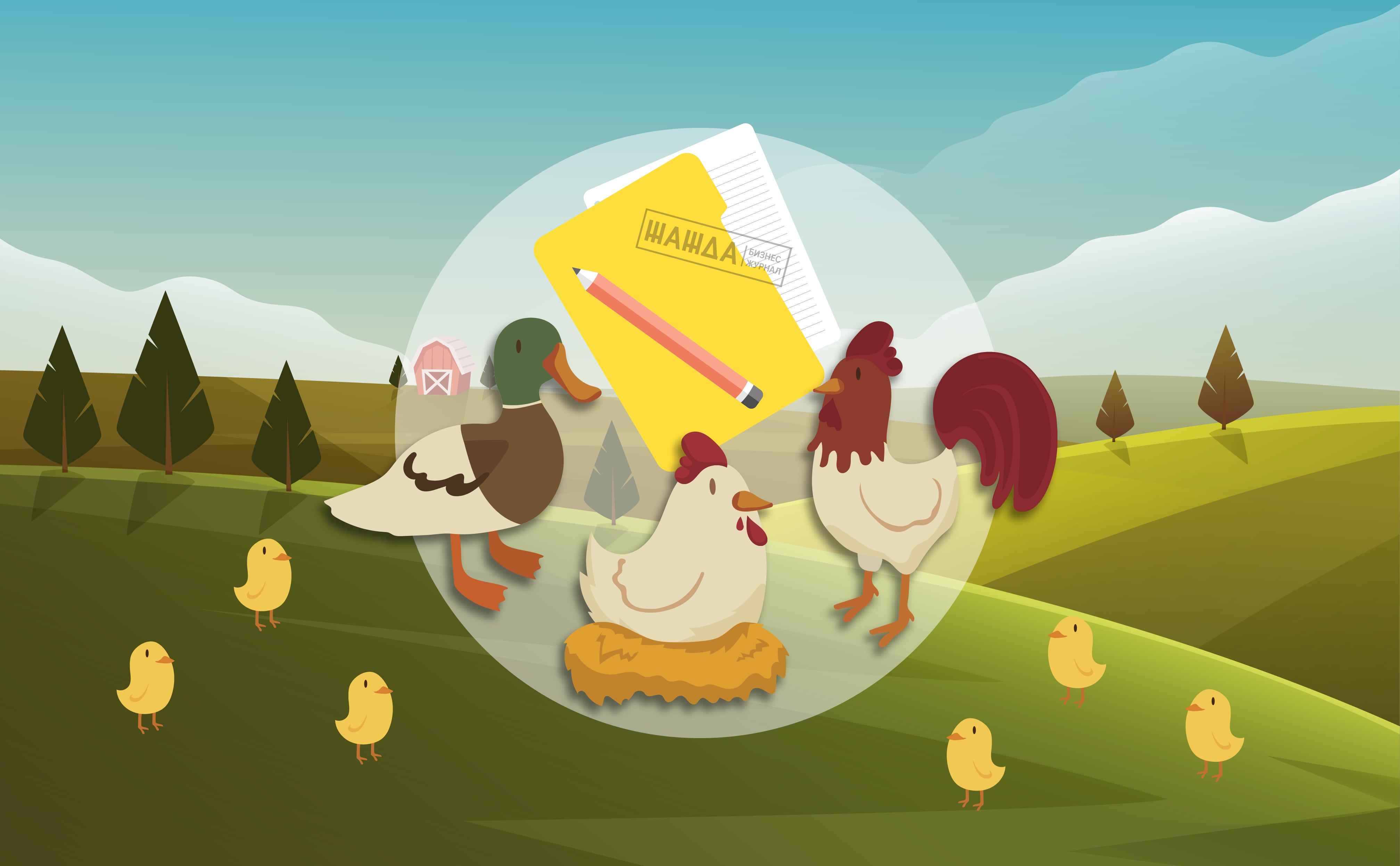 Бизнес план птицефабрики пример бизнес план продажи спецодежды