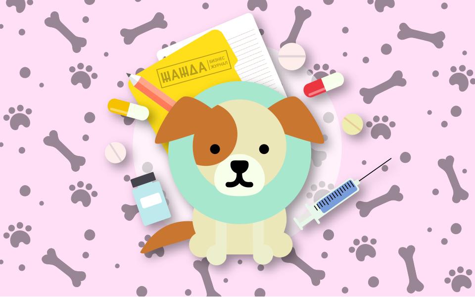 Бизнес план ветеринарной клиники: образец, расчеты, пример открытия, необходимые документы